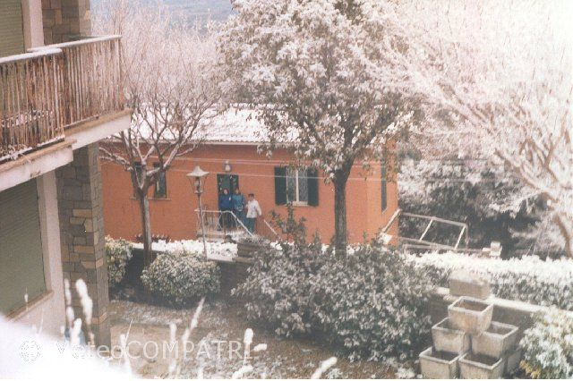 You are browsing images from the article: La neve del 13 febbraio 1994 nei Castelli Romani