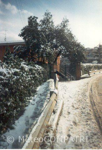 You are browsing images from the article: La neve del 22 febbraio 1996 nei Castelli Romani