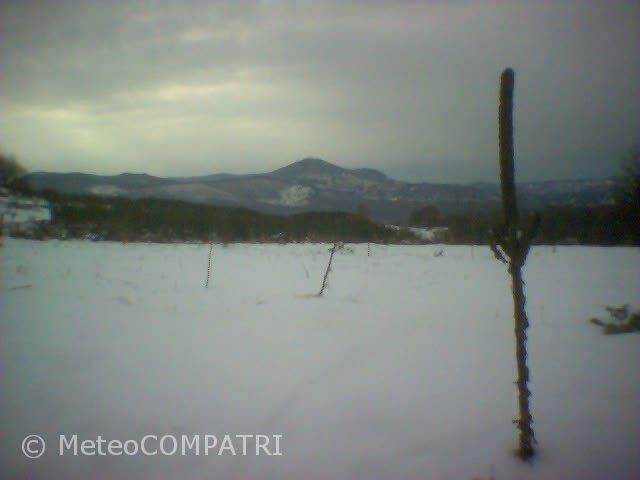 You are browsing images from the article: La neve del 27 gennaio 2005 nei Castelli Romani