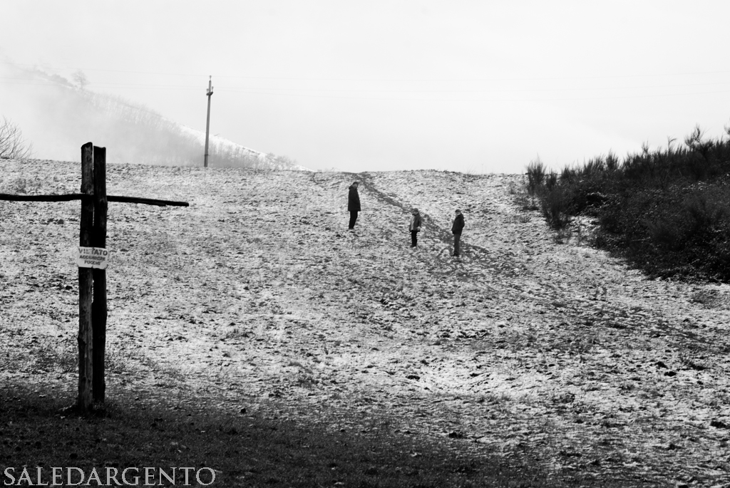 You are browsing images from the article: La neve del 27 e 28 dicembre 2008 nei Castelli Romani
