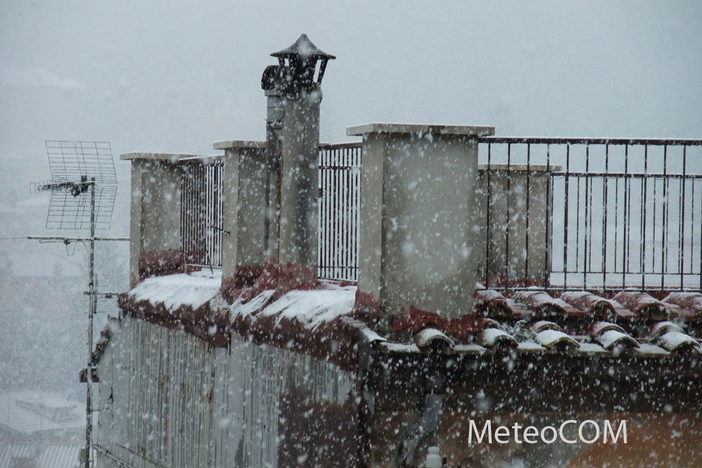 You are browsing images from the article: La neve del 31 gennaio 2010 nei Castelli Romani