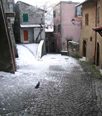 You are browsing images from the article: La neve di vari anni nei Castelli Romani